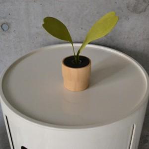 green_diffuser