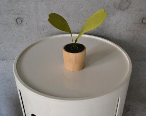 観葉植物のようなおしゃれすぎるルームフレグランス「GREEN DIFFUSER」!
