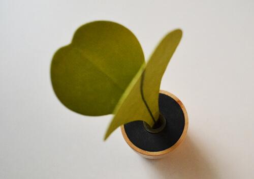 green_diffuser5