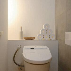 oshare-toilet-paper-storage6