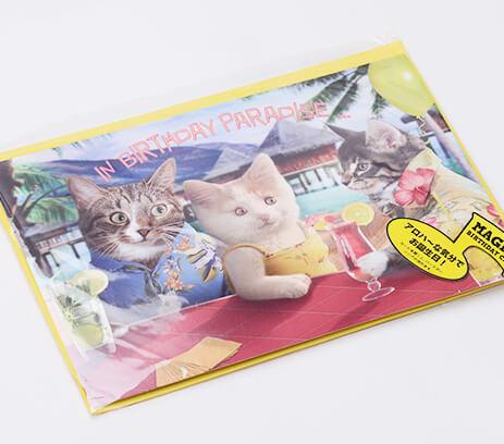 design-birthday-card3