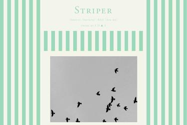 design-tumblr-theme17