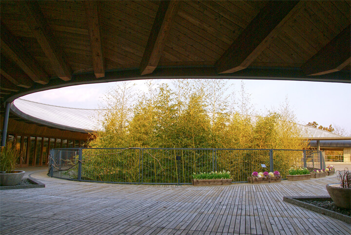 famous-architecture-kochi5
