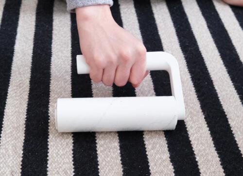 sarasa-design-b2c-carpet-cleaner5